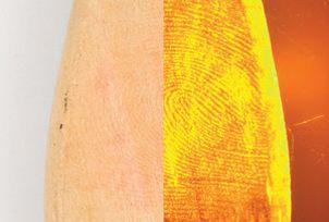 Redwop™ Fluorescent Fingerprint Powder