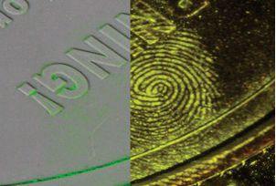 Greenwop™ Fluorescent Fingerprint Powder
