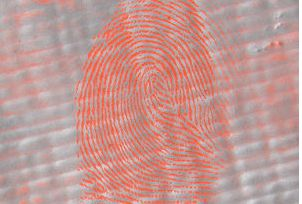 Red Bi-Chromatic Fingerprint Powder