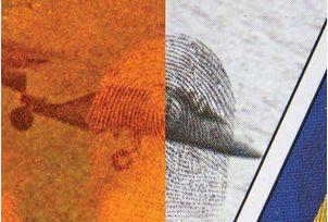 Black Ruby™ Magnetic Fingerprint Powder