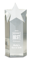 Large Crystal Star Column Award