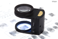 Regula 1008 Dactyloscopic Magnifier