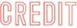 """Xstamper Pre-Inked Stock Stamp """"CREDIT"""" Xstamper Stock Stamp"""
