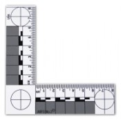 ABFO No.2 Photomacrographic Scale - Magnetic