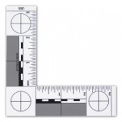 ABFO No. 2 Scale